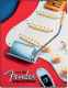 Fender Stratocaster since 1954 metal wall sign (de)
